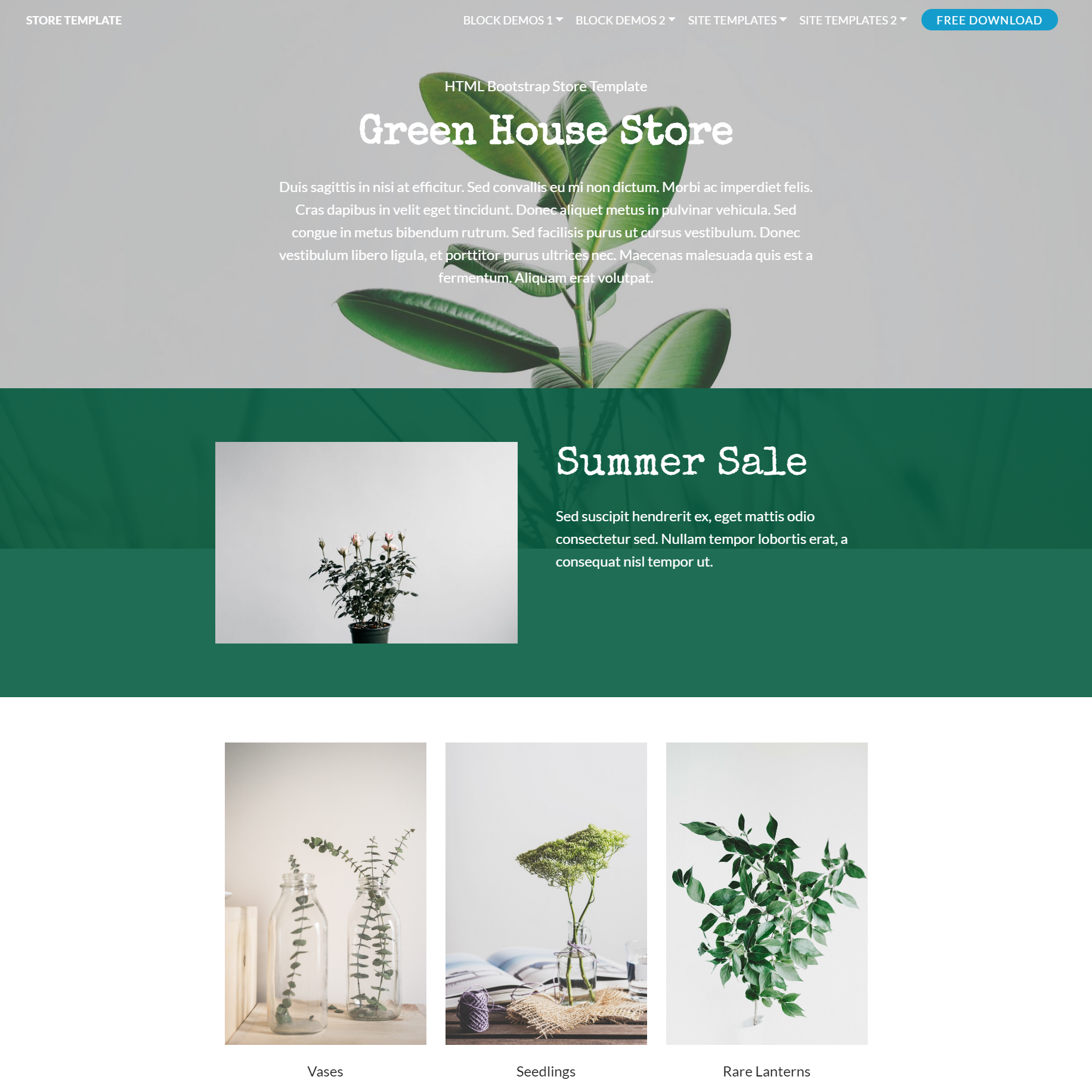 CSS3 Bootstrap Store Themes